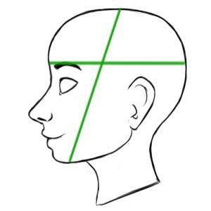 headmeasurementdiagram1